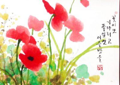 coquelicot-la-fleur-attend-encore-et-la-rose-sinstale-sur-la-plante